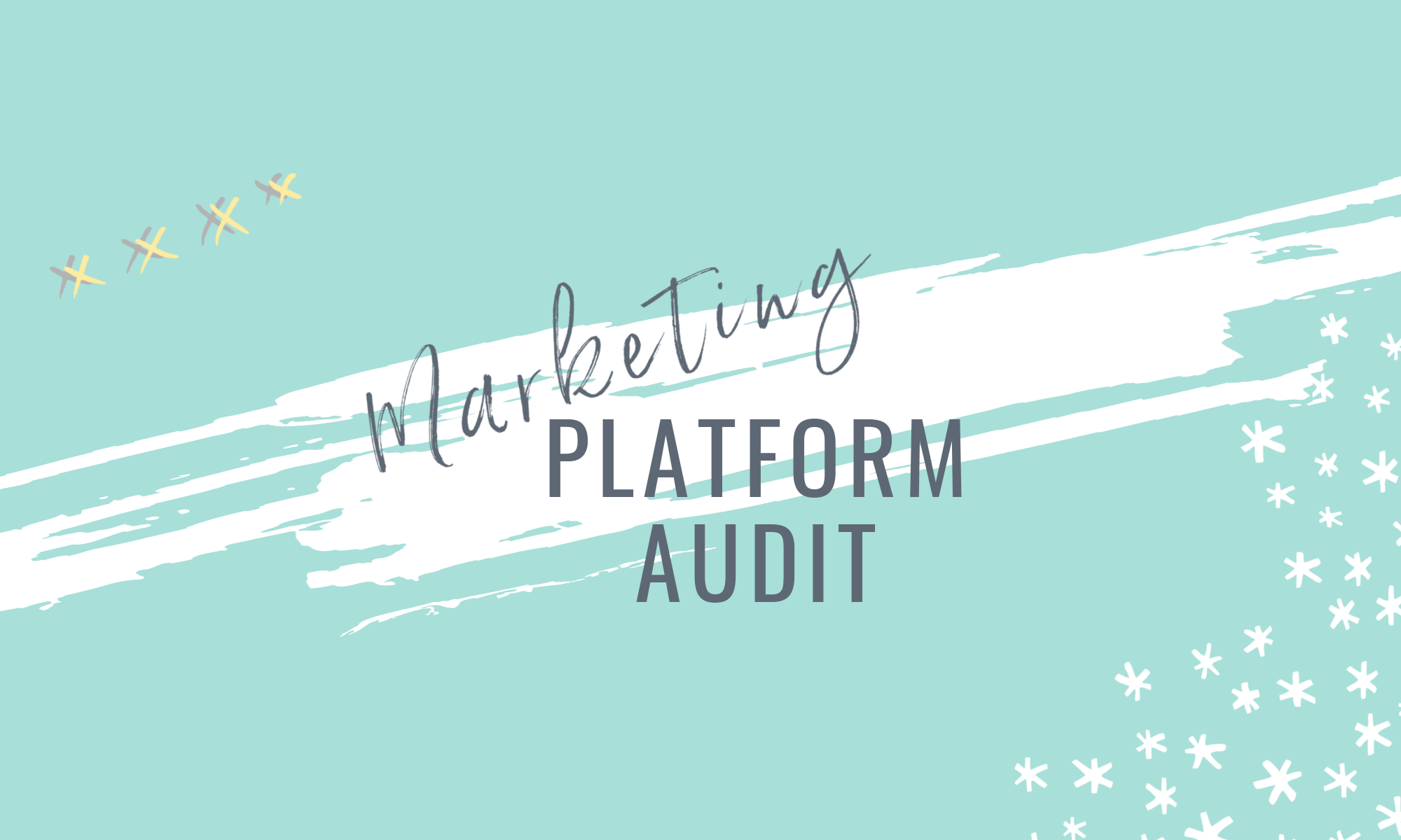 MARKETING PLATFORM AUDIT